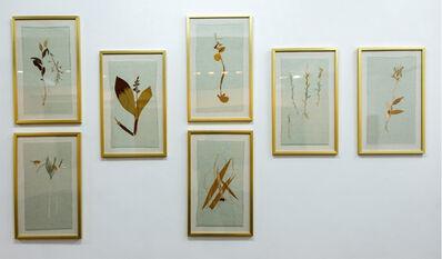 Maria Jose de la Macorra, 'Embroidered Herbarium', 2017