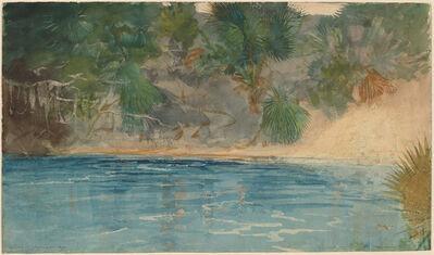 Winslow Homer, 'Blue Spring, Florida', 1890