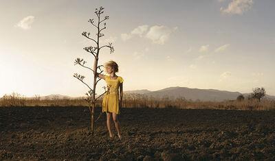 Ellen Kooi, 'Gela - Cactus', 2008
