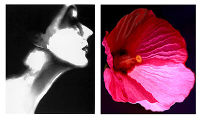 Lillian Bassman, 'Lisa Fonssagrives, Harper's Bazaar, circa 1950 and Flower 28 (Pink Mallow), 2006'