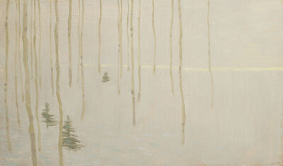 David Grossmann, 'Tree Patterns with Fading Winter Light', 2017