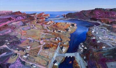 John Hartman, 'Salmon Cove from Above', 2017