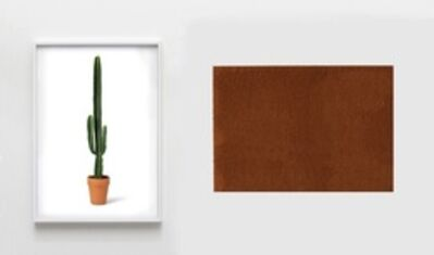 A Kassen, 'The Color of Things (Cactus)', 2013