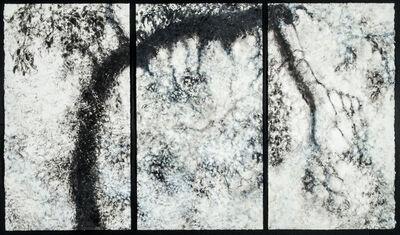 Willa Cox, 'Peach Tree Shadows, No. 6', 2009