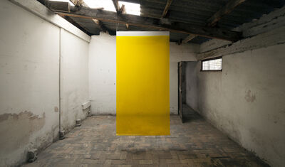 Irene Grau, '4 litros, Yellow', 2014-2017