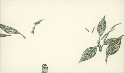 Huang Yu-Hao, 'Bidens_Leaf', 2021