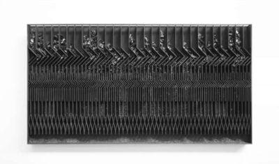Levi van Veluw, 'Membrane', 2017