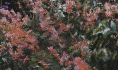 Quayola, 'Jardin #O1-2__A_05659', 2019
