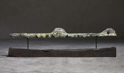 Riera i Aragó, 'Submarino horizontal', 2018