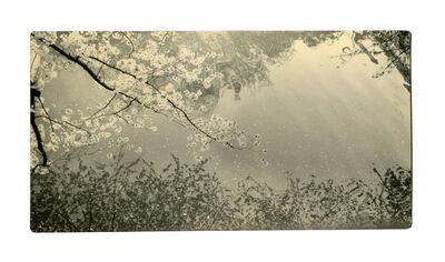Miho Kajioka, 'BK0059', 2014