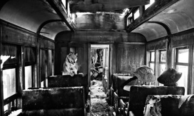 David Yarrow, 'Ride The Ghost Train ', 2015