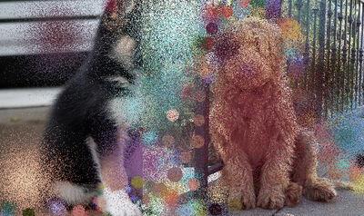 Hilary Lloyd, 'Dogs I', 2017