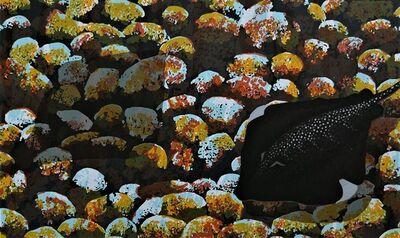 Lin Onus, 'Djalng Baltjigi Nyuni Djinigima (Stingrays and Rocks)', 1996