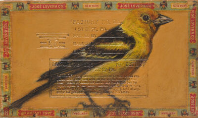 Ed Musante, 'Western Tanager / Lovera', 2003