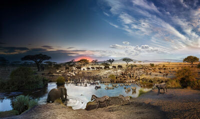 Stephen Wilkes, 'Serengeti, National Park, Tanzania, Day to Night', 2015