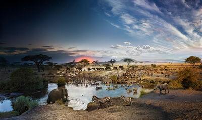 Stephen Wilkes, 'Serengeti, National Park, Tanzania (Day to Night)', 2015