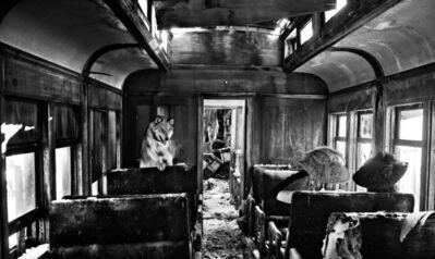 David Yarrow, 'Ride The Ghost Train', 2015