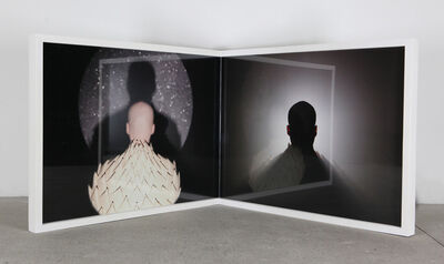Michael Fliri, 'The Unseen Looks Like Something You Have Never Seen', 2011-2012