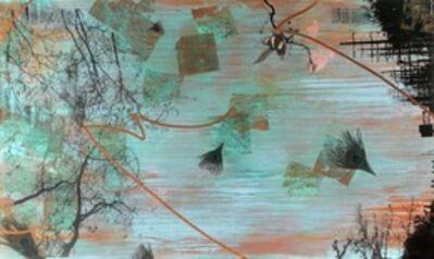 Tracy Silva Barbosa, 'Impetus', 2010