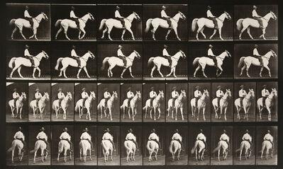 Eadweard Muybridge, 'Animal Locomotion: Plate 579 (Man Riding Horse)', 1887