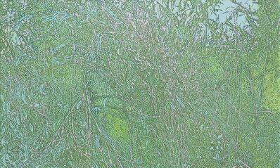 Xiao Yu 蕭昱, 'Grass 2007.04.10 ', 2007