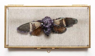 Tyler Thrasher, 'Crystallized cicada #2', 2018
