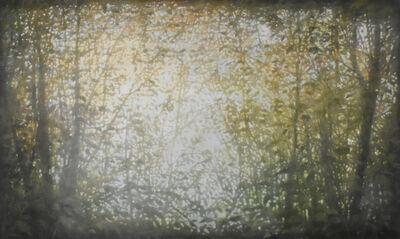 Thomas Monaghan, 'Openings 4', 2018