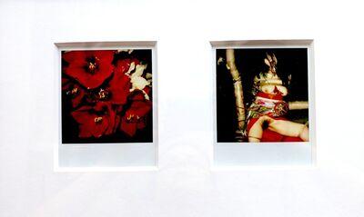 """Nobuyoshi Araki, '""""Flower"""", 2006-2009 + """"Pola Eros"""", 2010-2012'"""
