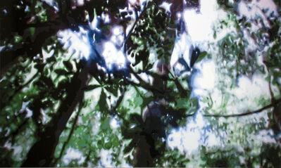 Timothy Tompkins, 'Jungle v.1', 2009