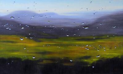 Barbara Amos, 'Surface Tension: Valley Meadow', 2014