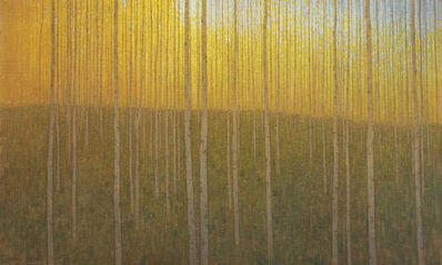 David Grossmann, 'Cathedral Grove', 2015