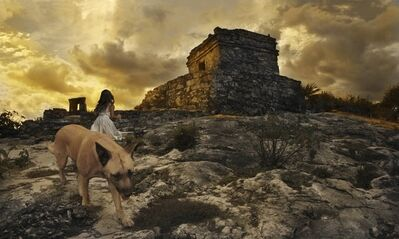 Tom Chambers, 'Winter Dog, Summer Solstice ', 2010