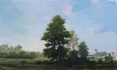 Peter Hoffer, 'Montcalm (Field Elm)', 2021