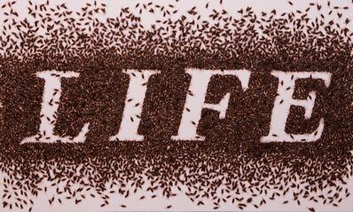 Anon Pairot, 'Sweet Word # Life', 2014