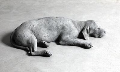 Hans Op de Beeck, 'Dog', 2019