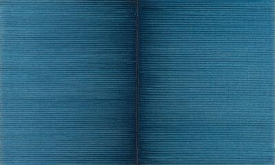 Irma Blank, 'Schriftzug=Atemzug', 1988