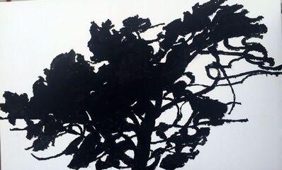 Alexandre Hollan, 'Le chêne tournant', 2016