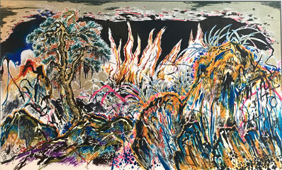Sun Xun  孙逊, 'Endopsychic Fire', 2015
