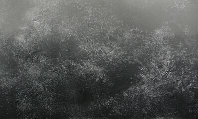 Adam Fuss, 'Untitled', 2005