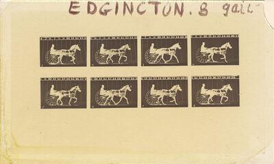 Eadweard Muybridge, 'Edgington', 1878