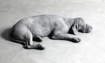 Hans Op de Beeck, 'Dog (bronze)', 2019