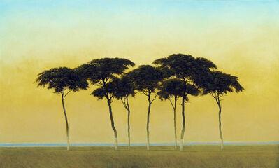 Robert Marchessault, 'Namib'