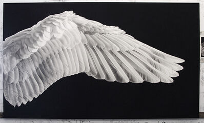 Robert Longo, 'Untitled (Gabriel's Wing)', 2016