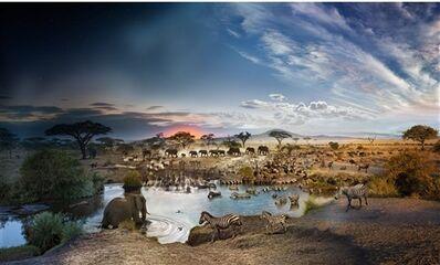 Stephen Wilkes, 'Day to Night, Serengeti National Park', 2015