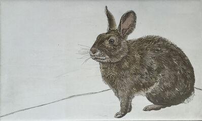 Julia Lucey, 'Brush Rabbit', 2015