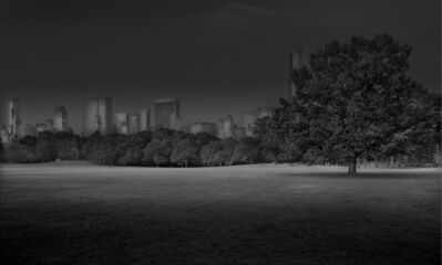 Michael Massaia, 'Sheep Meadow Sunrise, Central Park, New York City', 2012