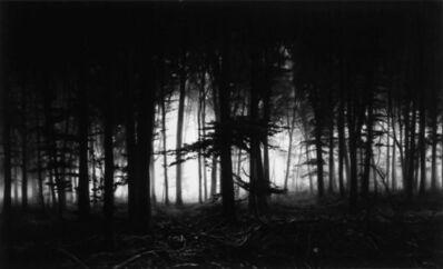 Robert Longo, 'Robert Longo, Forest of Doxa ', 2014