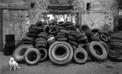 Pentti Sammallahti, 'Cilento, Italy', 2000