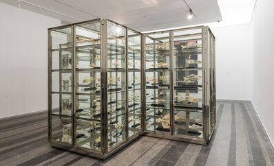 Damien Hirst, 'Here Today, Gone Tomorrow', 2008