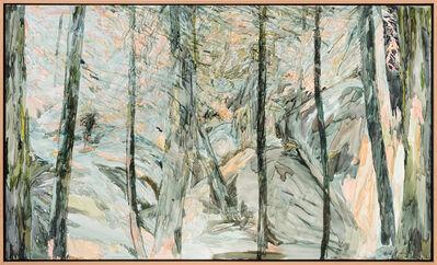Heidi Fourie, 'Wilderness Area ', 2020